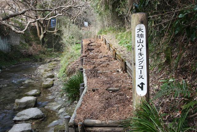大楠山 | 山ガールのための山歩...